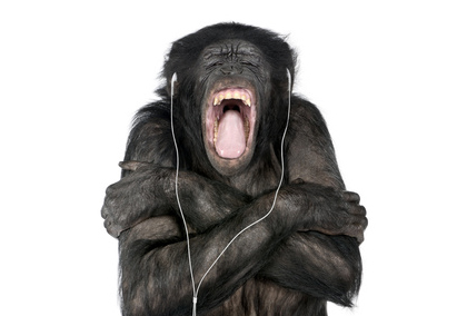Christian Music Tames the Savage Beast